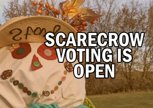 Thumbnail for the post titled: Scarecrow Voting is OPEN