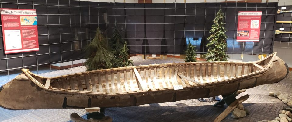 picture of a canoe resting in a museum exhibit
